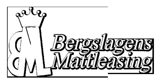 Bergslagens Mattleasing